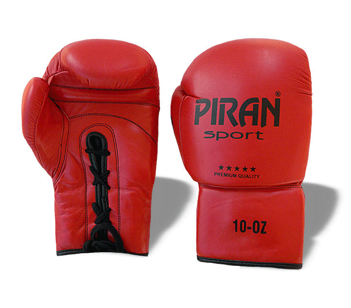 Boxerské rukavice PROFI BOX (10oz)