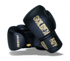 Boxerské rukavice GOLDEN BOY (10oz-16oz)